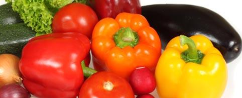 Las hortalizas tienen el mejor inicio de campaña de la década